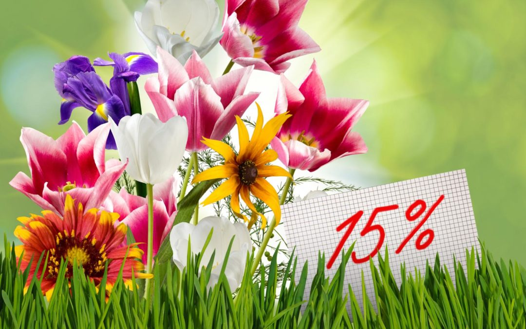 Spring Special: 15% off